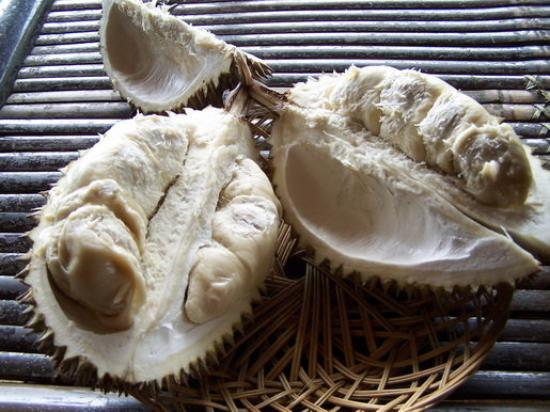 Bogor ภาพถ่าย