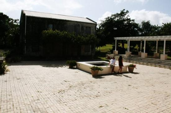 Cruzan Gardens Photo