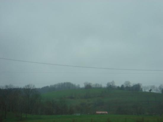 Charleston, Batı Virjinya: More of West Virginia. See? More green grass! And getting into some mildly sloping hills. Poor c