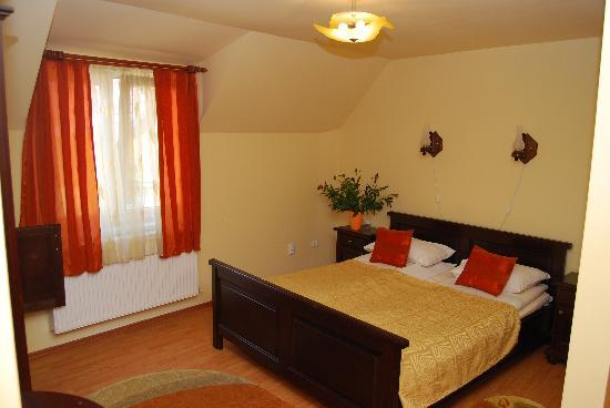 Pensiunea Magnolia Sibiu: Room