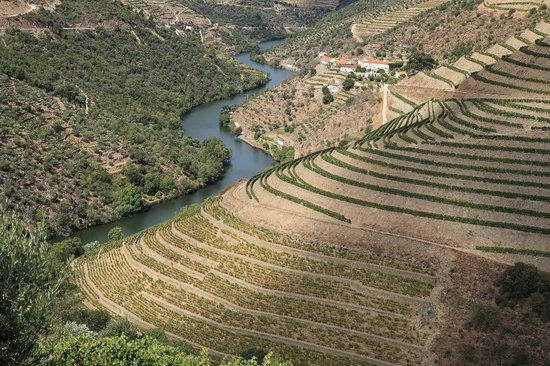 Pinhao, Portugal: View of Quinta do Panascal