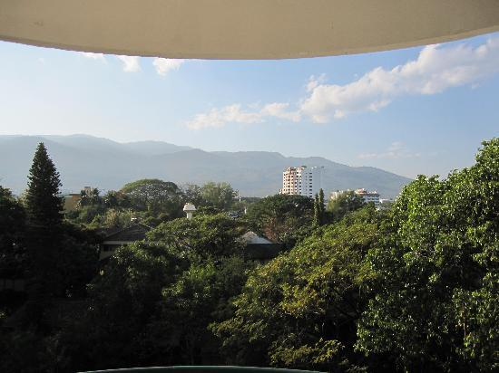 Hillside Plaza & Condotel 4 : 部屋からの景色、朝は鳥の鳴き声が綺麗