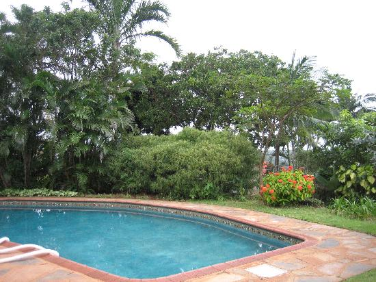 Hilltop-Durban B&B: the swimming pool