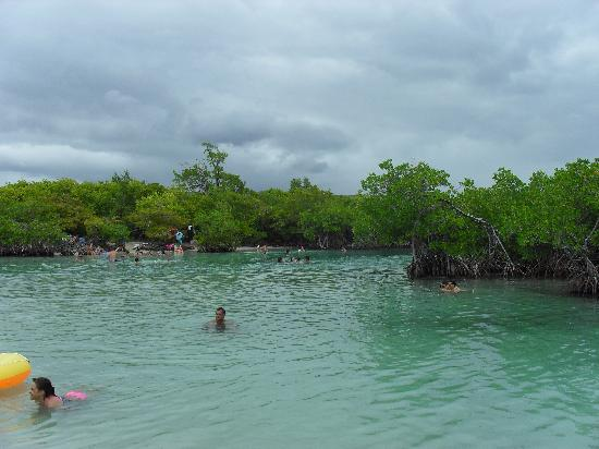 Playa Azul: Guilligan's Island