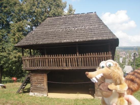 Cluj-Napoca, โรมาเนีย: Visite d'un musée ethnographique : Des maisons de toute la roumanie provenant de toutes époques