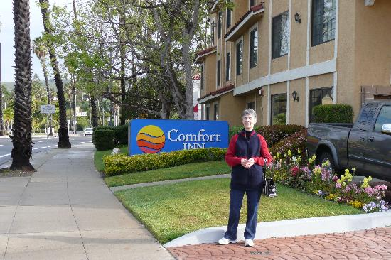 Comfort Inn: Spring morning in Ventura.
