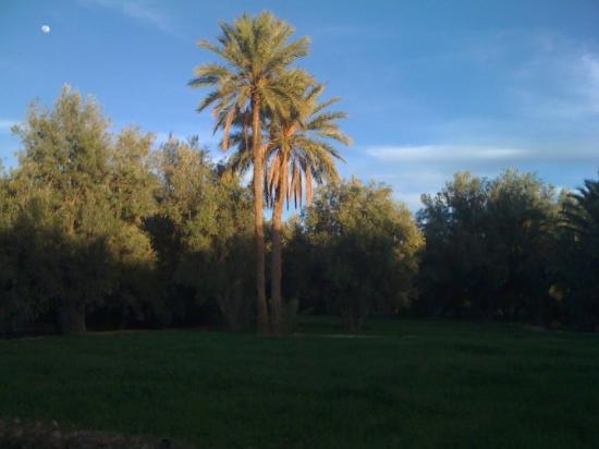 Errachidia, Marokko: 3jabni ghi l9amar!