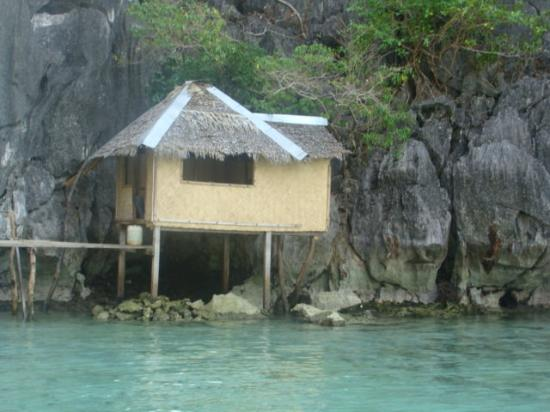 Palawan, Filippinene: Barracuda lake