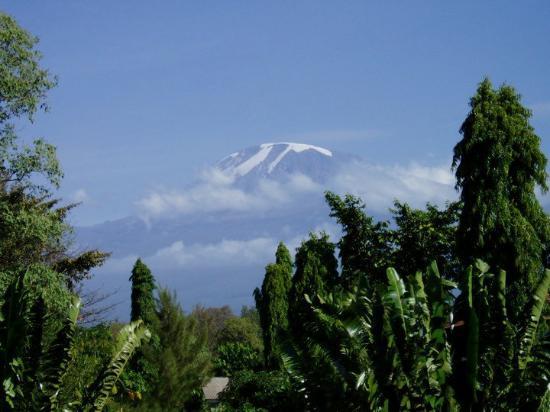 Moshi, Tanzania: Blick zum Kilimanjaro