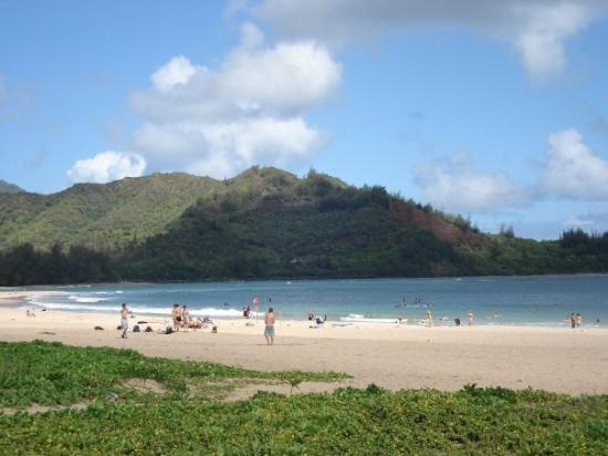 Hanalei Beach: The beach that was a two minute walk from our rental on Hanalei Bay