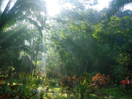 Chisec, Guatemala: Sunshine in the garden