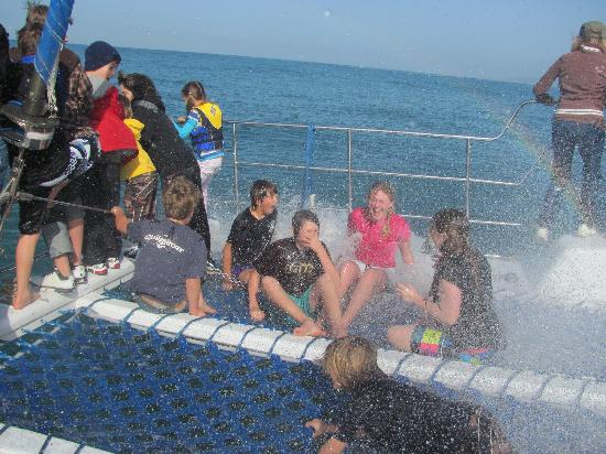 "Capt. Dave's Dolphin & Whale Watching Safari: Kids having a great time in the ""Soaked Zone"""