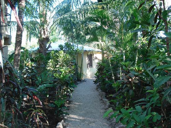 KayaSol Surf Hotel: Kaya Sol Gardens