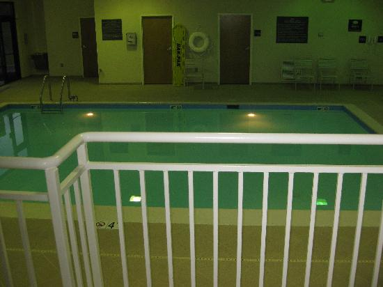 Hampton Inn Hagerstown - I-81: pool