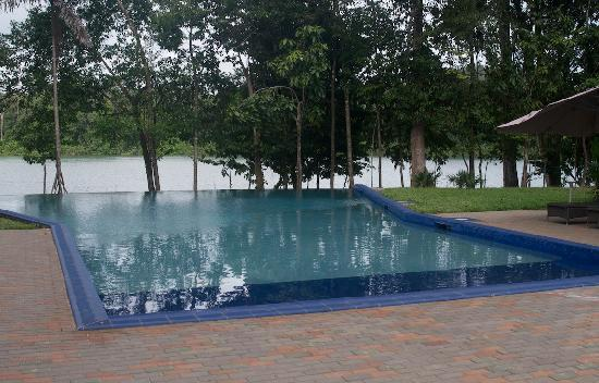 Bergendal Eco & Cultural River Resort: Cool infinity pool. Suriname's one and only.