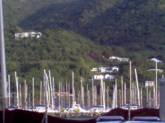 โรดทาวน์, Tortola: A whole fleet of sailboats in Road Town harbor