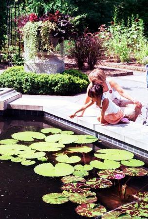 Dixon Gallery & Gardens: Dixon Botanic Garden @ Memphis Fuji Superia 100 / Pentax Super Program