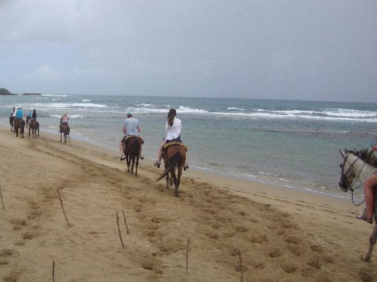 Grand Paradise Playa Dorada: horseback riding on the beach in the rain
