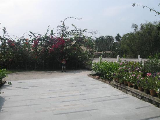IORA - The Retreat,Kaziranga: Walk Way