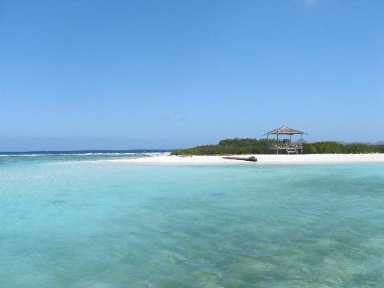 Posada Natura Viva: Noronquis - turtle island