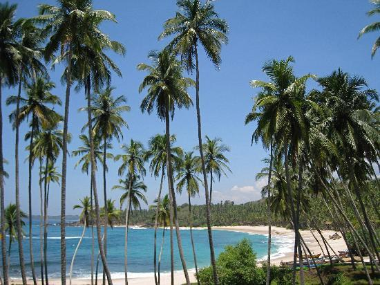 Amanwella : One of the most beautiful beach in the world