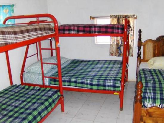 Cuatro Casas Hostel : Dorm beds