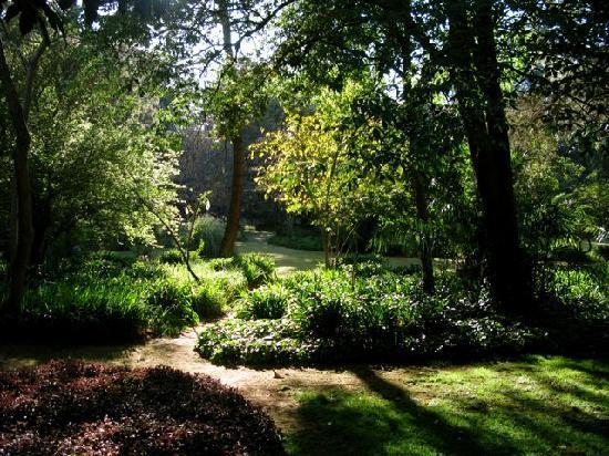 Casa Werma: Garden View