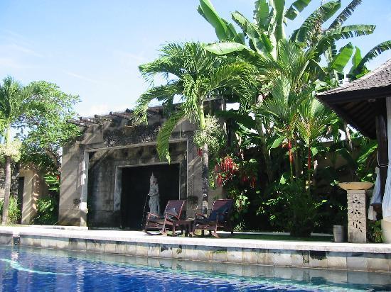 Bebek Tepi Sawah Villas & Spa: piscine