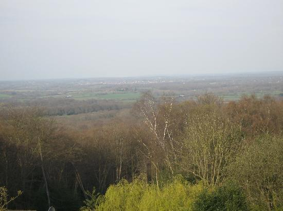 Arundel Holt Court: The view from our bedroom window