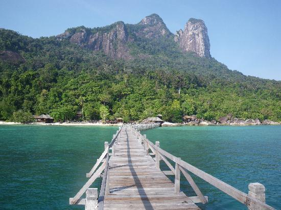 article with regards to pulau tioman