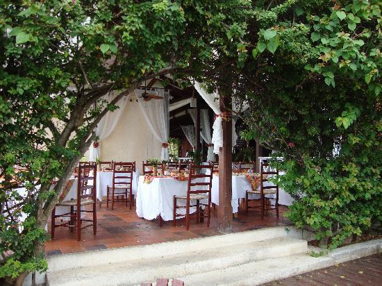 Ti Kaye Resort & Spa: View into the restaurant.