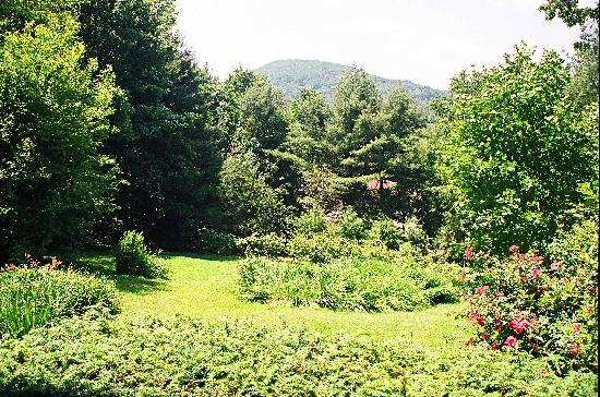 Colonial Pines Inn Bed and Breakfast: Porch View of Satulah Mountain