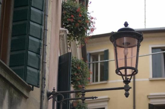 Treviso Photo