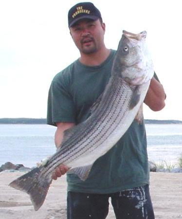 Southampton, Nowy Jork: Striped Bass