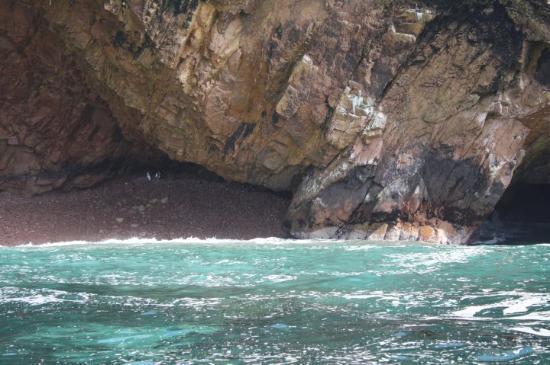 Foto de Paracas