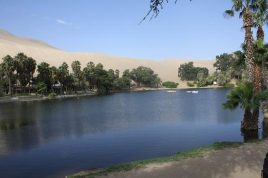 Huacachina Photo