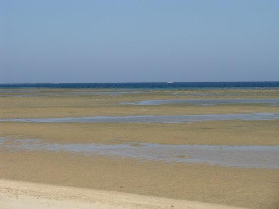 Hamata and Berenice, Egipto: Spiaggia