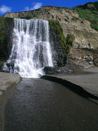Alamere Falls: fall by the beach