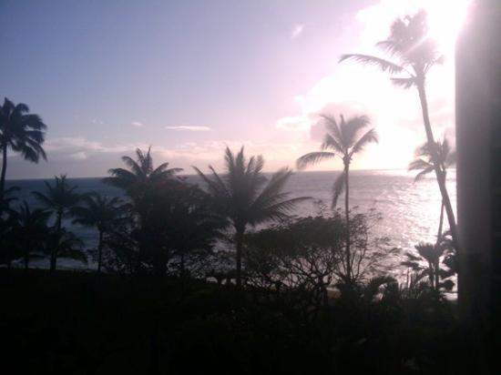 Bilde fra Valley Isle Resort