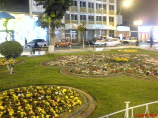 Tacna Photo