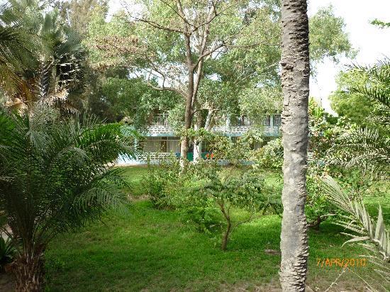 Senegambia Beach Hotel: garden rooms