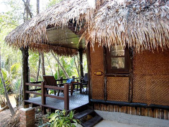 vue de l'ensemble du bungalow