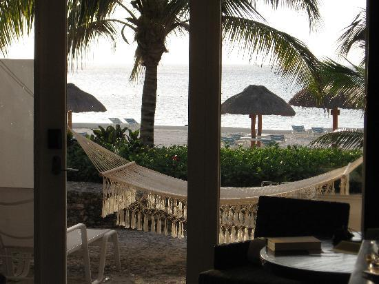 Presidente Inter-Continental Cozumel Resort & Spa : View from the room