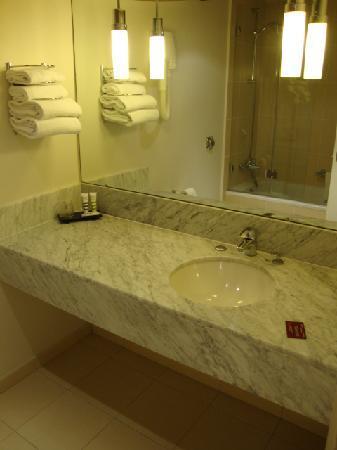 Mercure Orleans Centre: baño