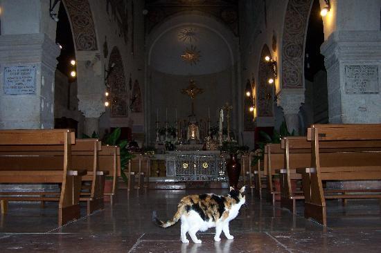S. Giovanni in Valle : La chiesa attuale