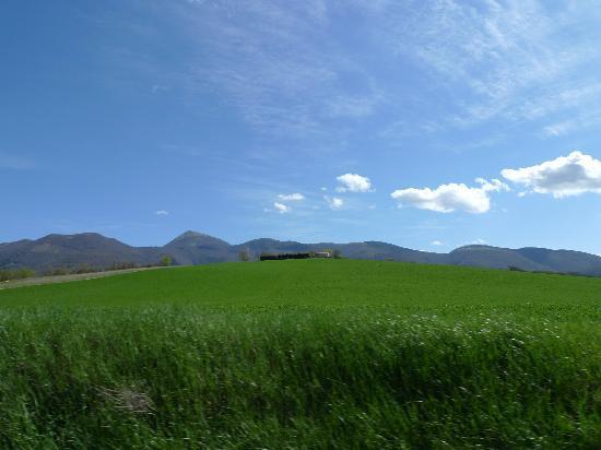 Le Marche landscape, near Il Casato