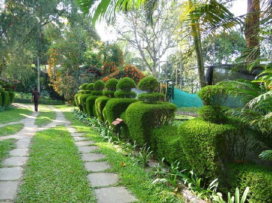 Kolagappara, India: Garden