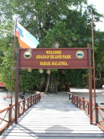 Pulau Sipadan Bild