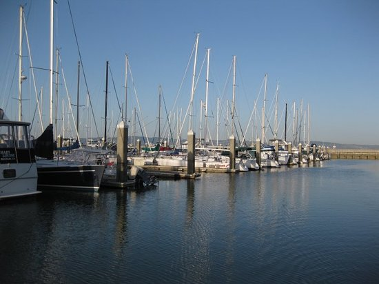 Marina District