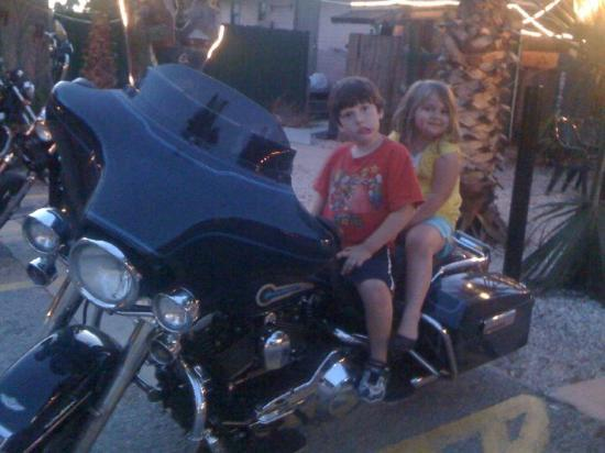 Black Hammock Adventures: William and Kylie on the Harley